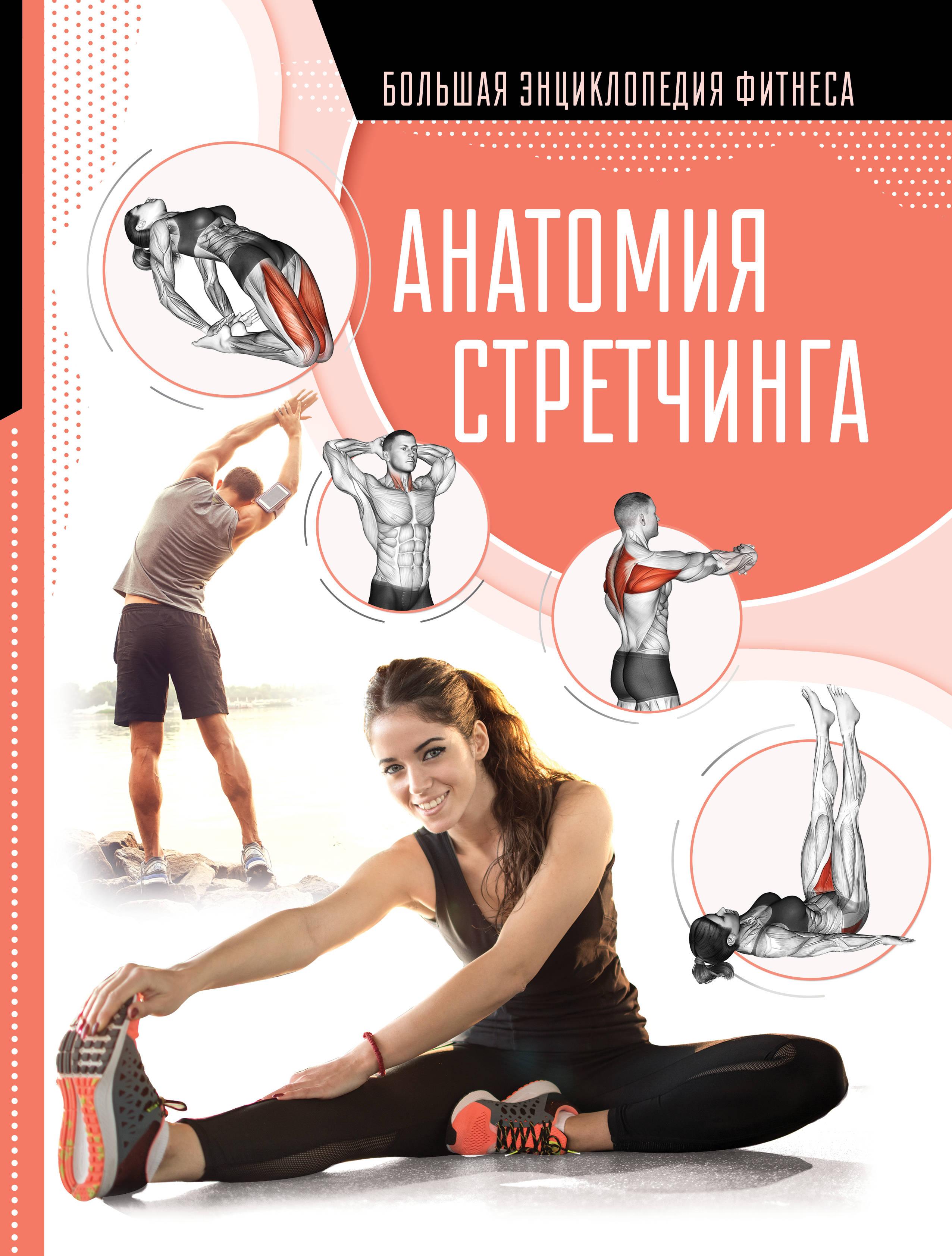 Anatomija stretchinga