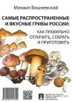 Samye rasprostranennye i vkusnye griby Rossii: kak pravilno otlichit, sobrat i prigotovit
