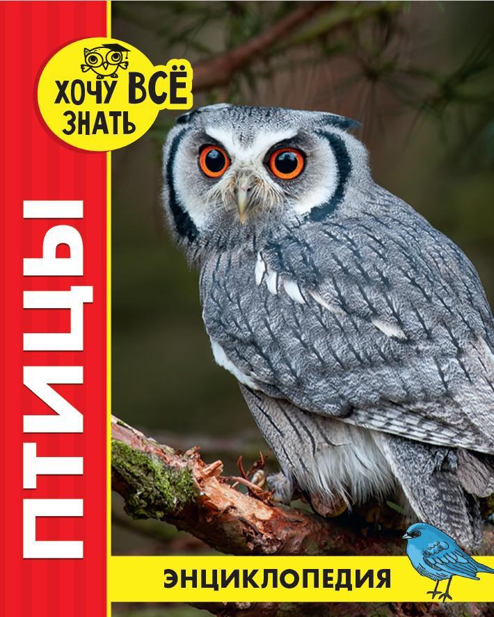 Ptitsy. Entsiklopedija