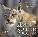 Dikie koshki Rossii. Fotografii Valerija Maleeva. Kalendar nastennyj na 2021 god (300kh300 mm)
