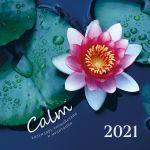 Calm. Kalendar spokojstvija i meditatsii. Kalendar nastennyj na 2021 god (300kh300 mm)
