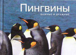 Pingviny. Vazhnye i druzhnye