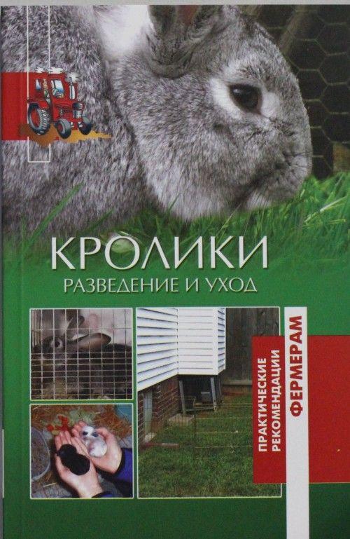 Кролики.Разведение и уход
