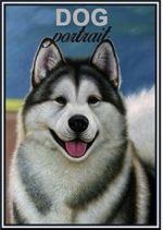 Matches. Husky - Dog portrait
