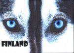 Kohokuvioitu postikortti - Finland Husky
