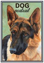 Спички. Овчарка - Dog portrait