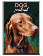 Спички. Dog portrait