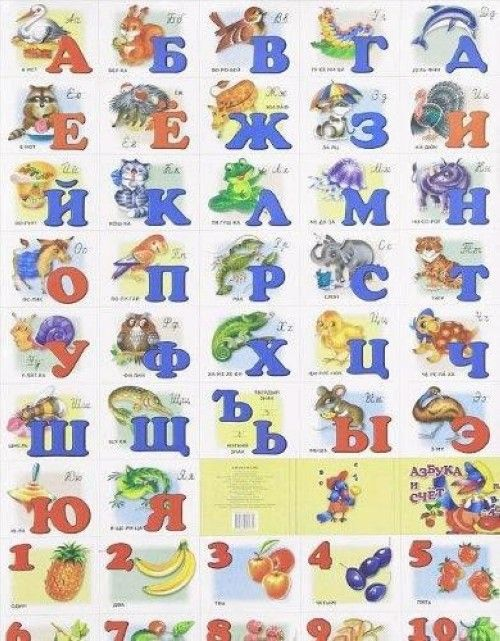 Alphabet and counting. Russian alphabet with small and capital letters and numbers.