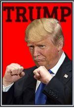 Спички.  Trump