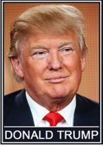 Спички. Donald Trump